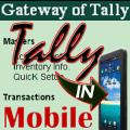 Pocket Tally