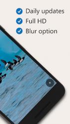 DailyPic – Bing Wallpaper 1