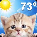 Weather Kitty